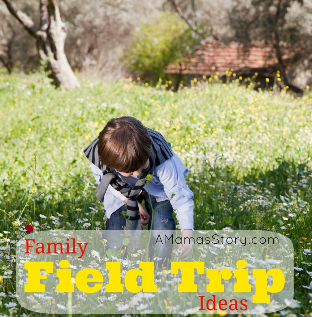 Family Field Trip Ideas