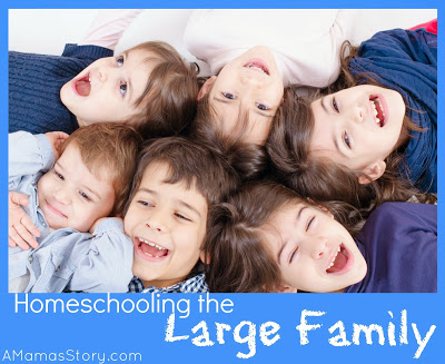 Homeschooling the Large Family
