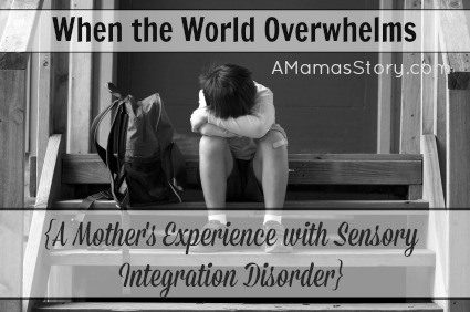 When The World Overwhelms {A Mother's Experience with Sensory Integration Disorder}