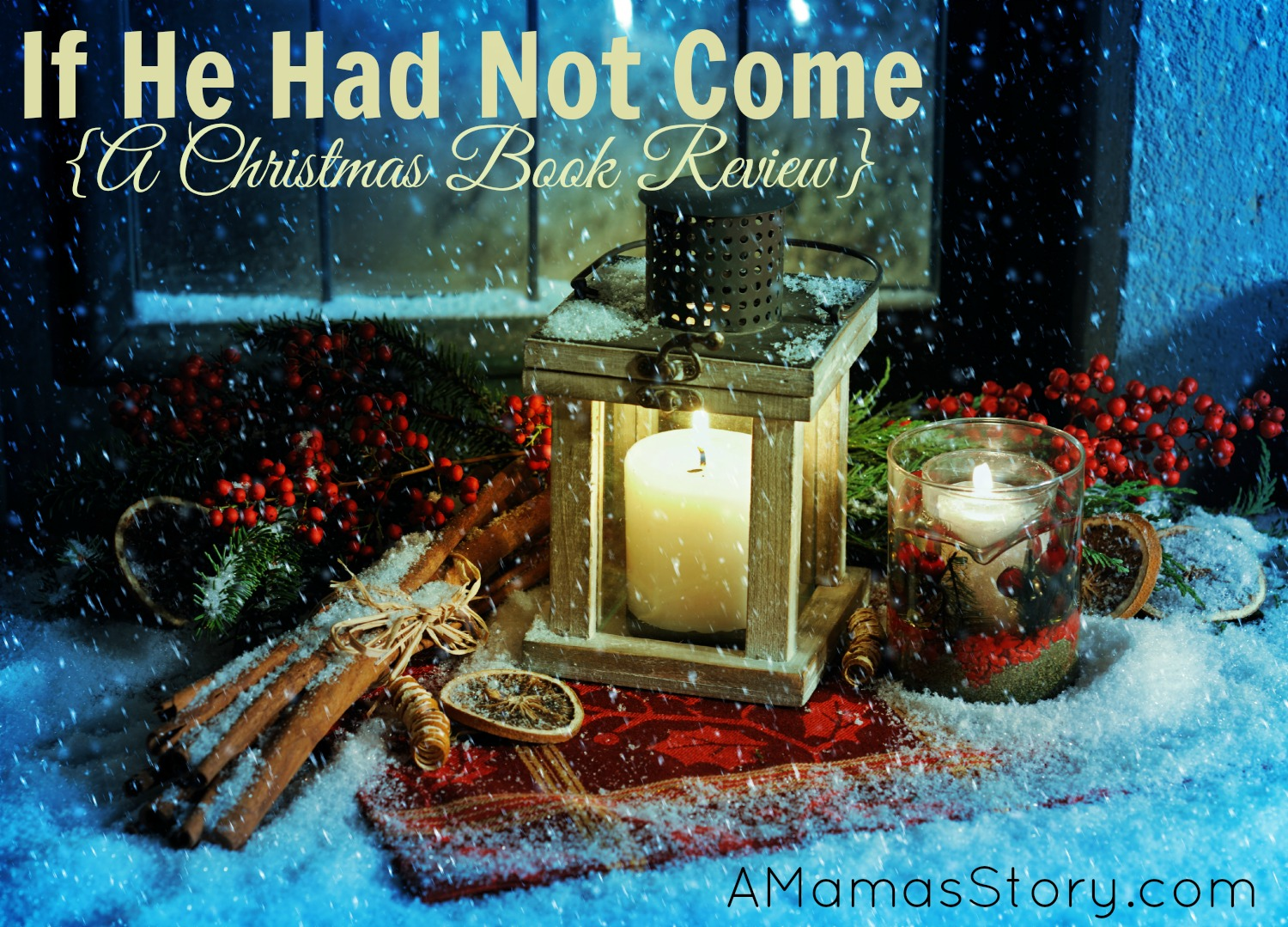 If He Had Not Come {A Christmas Book Review}