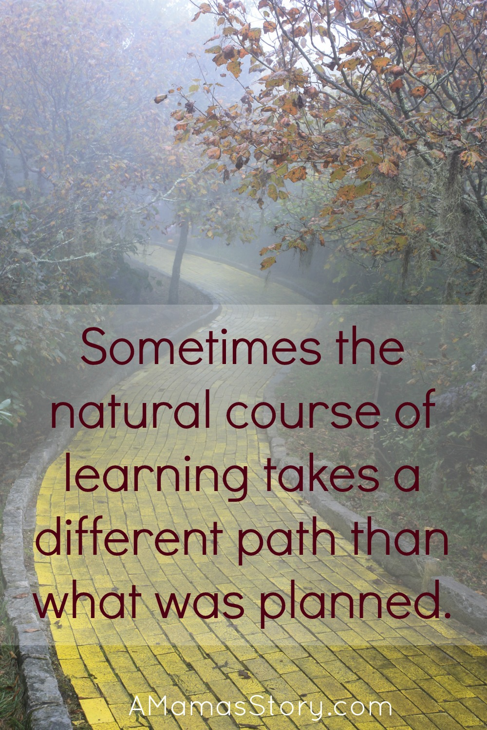 A Natural Learning Initiative