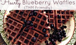 Hearty Blueberry Waffles