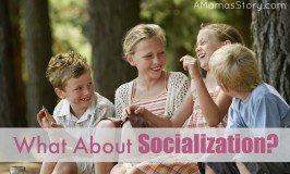 What About Socialization2