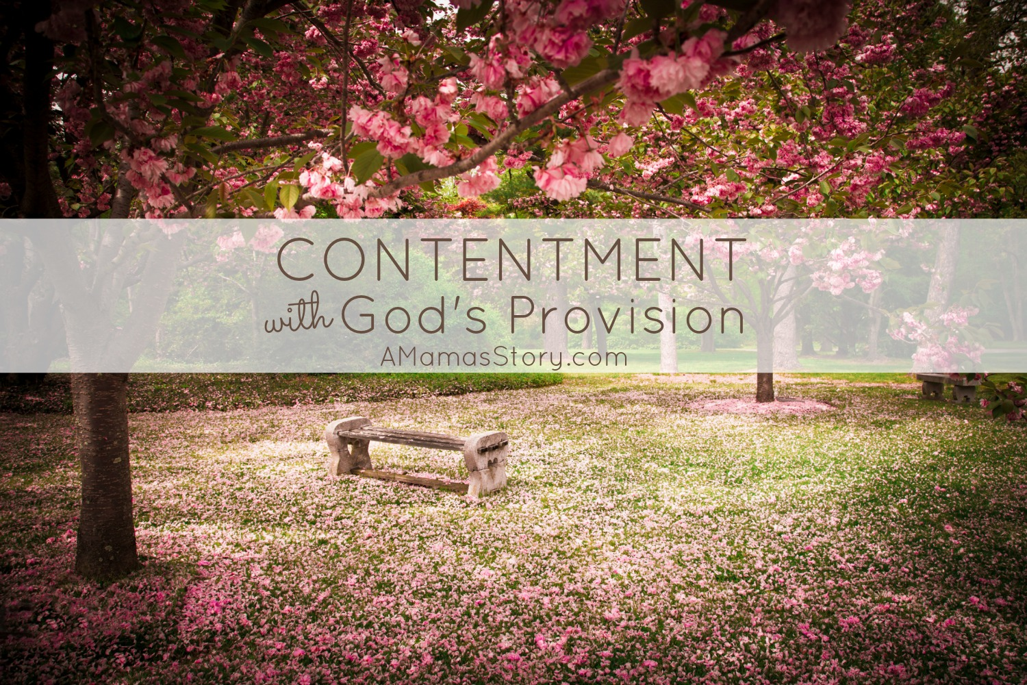 Contentment with God's Provision