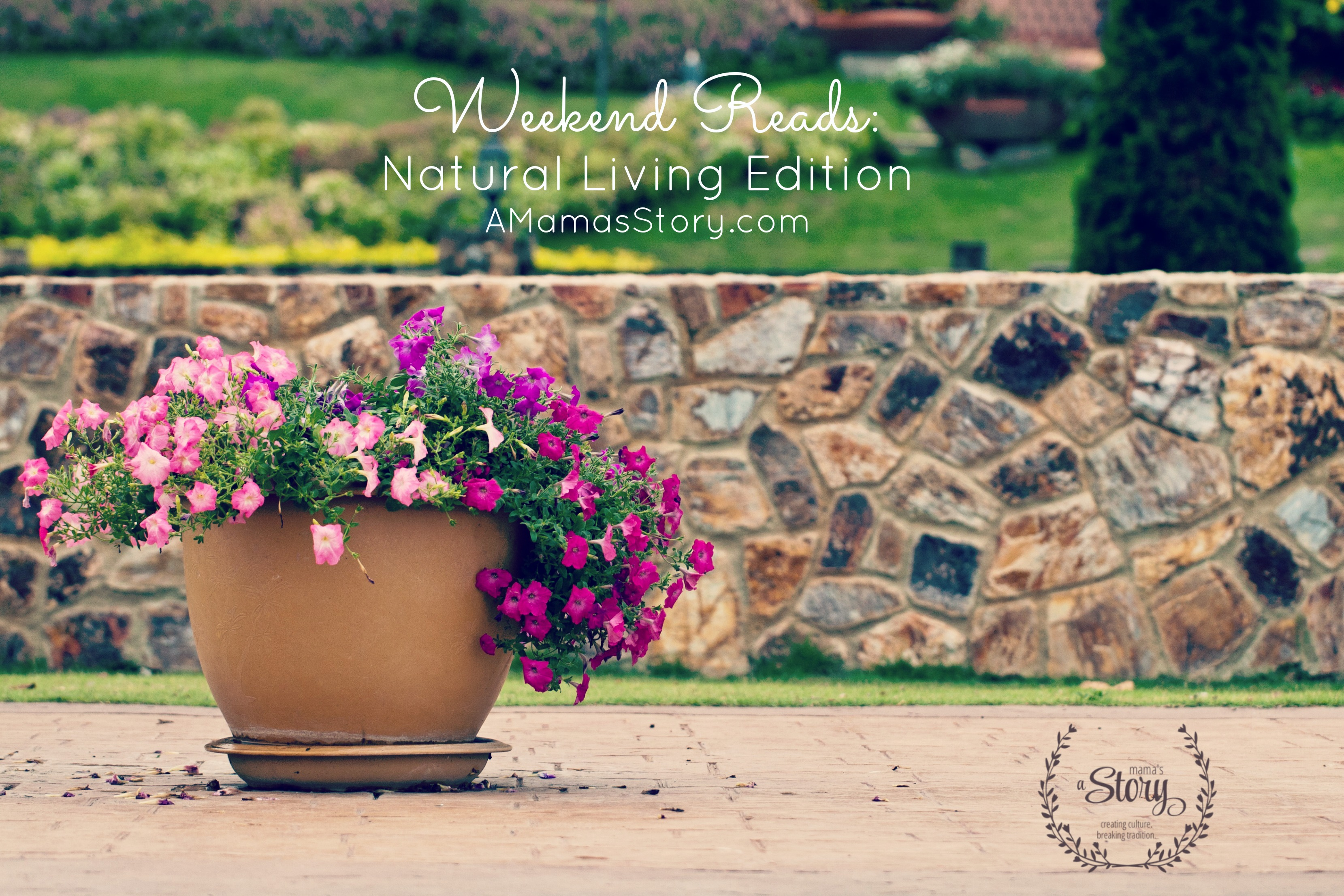 Weekend Reads: Natural Living Edition