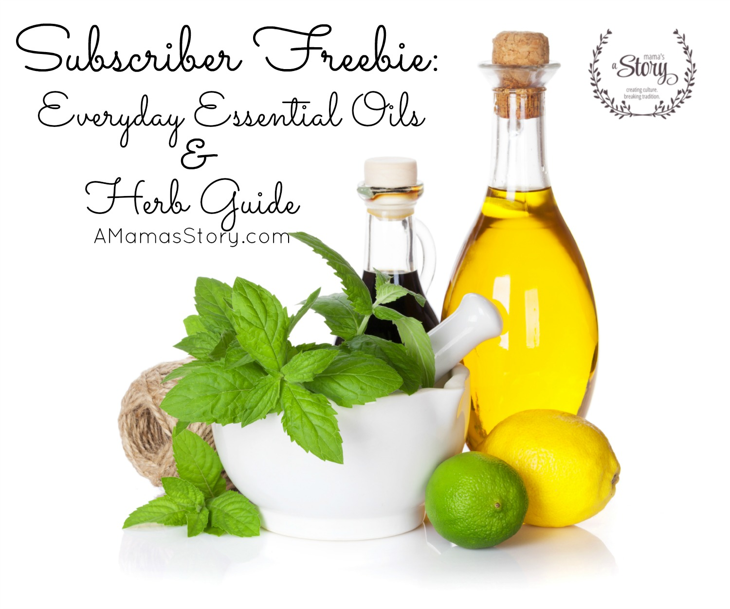 Subscriber Freebie: Everyday Essential Oils & Herbs Guide
