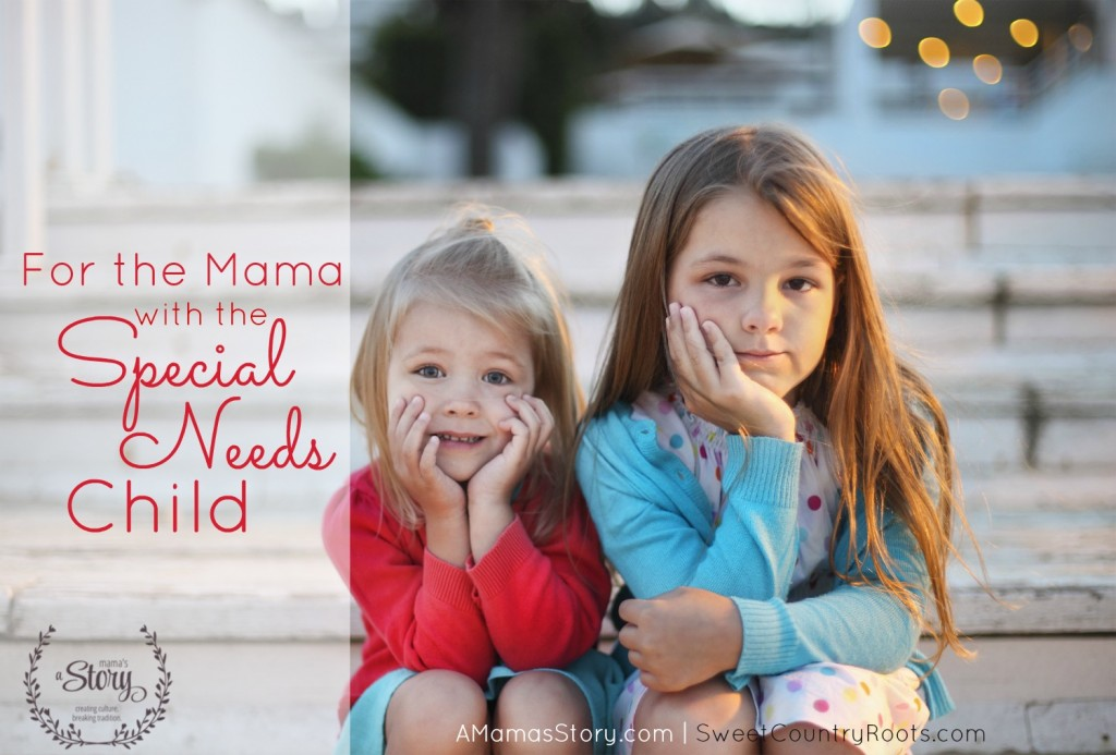 For the Mama With the Special Needs Child
