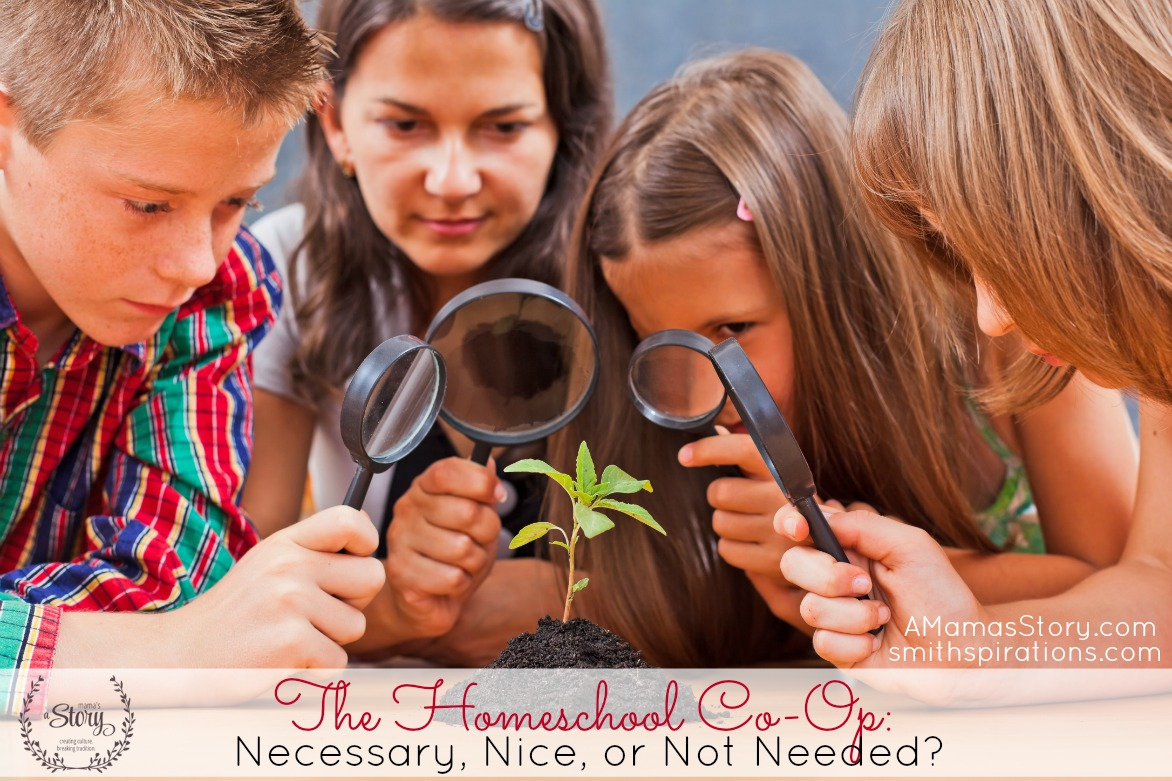 The Homeschool Co-Op: Necessary, Nice, or Not Needed?