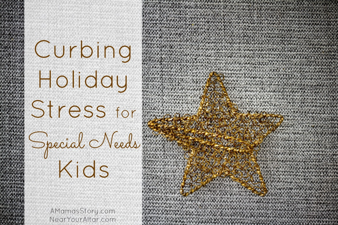 Curbing Holiday Stress for Special Needs Kids