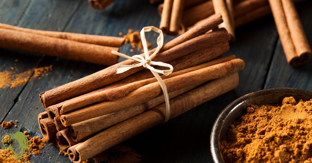 A bundle of cinnamon sticks and bowl of ground cinnamon. An ingredient used in the cinnamon mocha latte recipe.