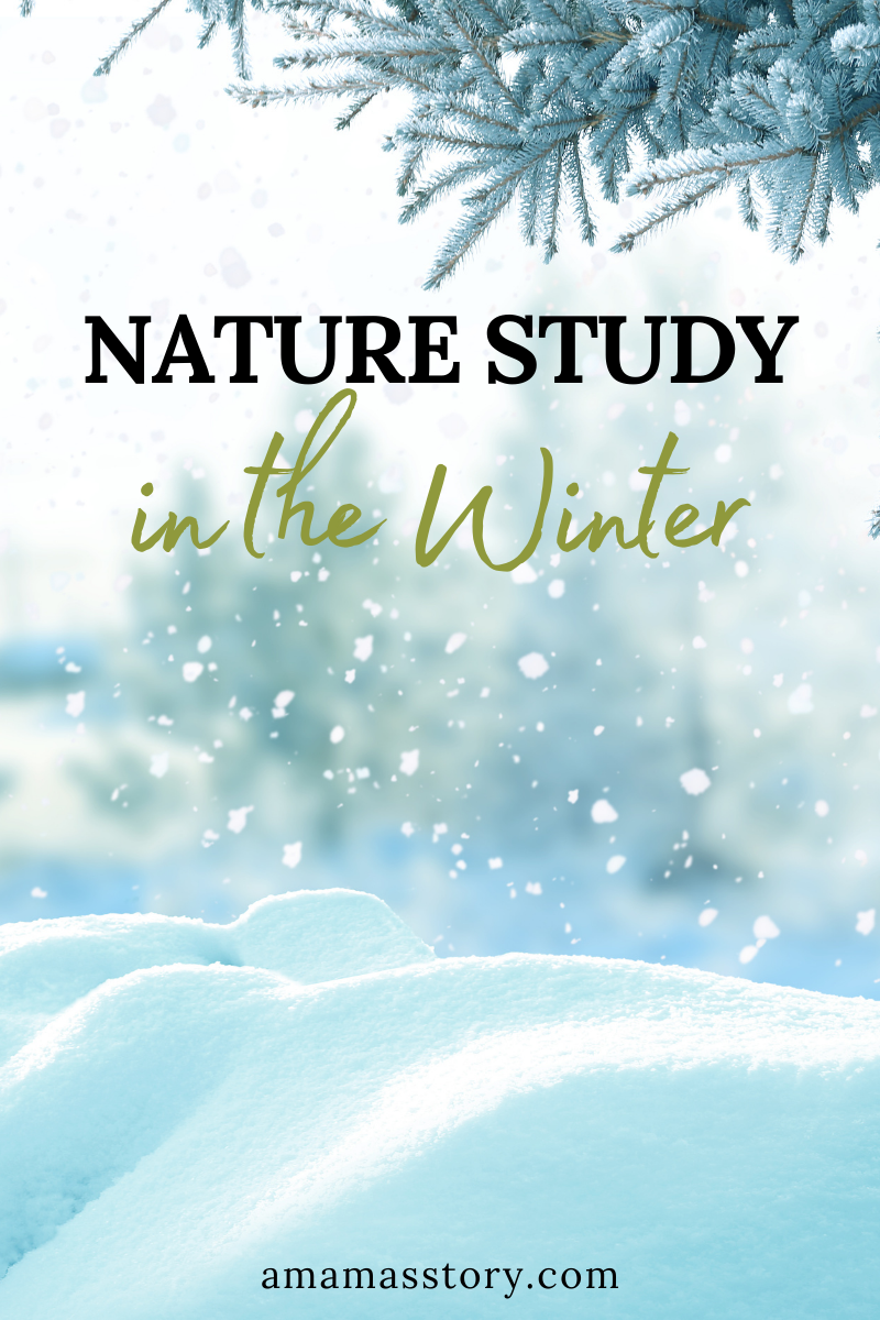 Winter weather and ways to do nature study in the winter.