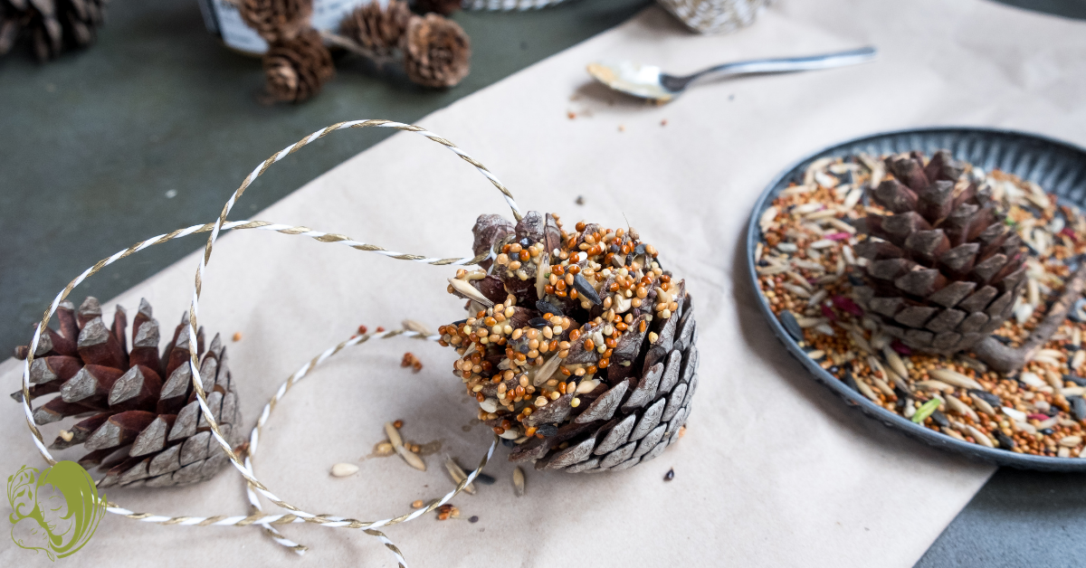 Supplies to make a pine cone bird feeder: pine cones, bird seed, peanut butter, and string.